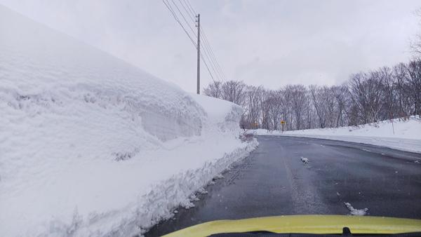 春の雪1.jpg